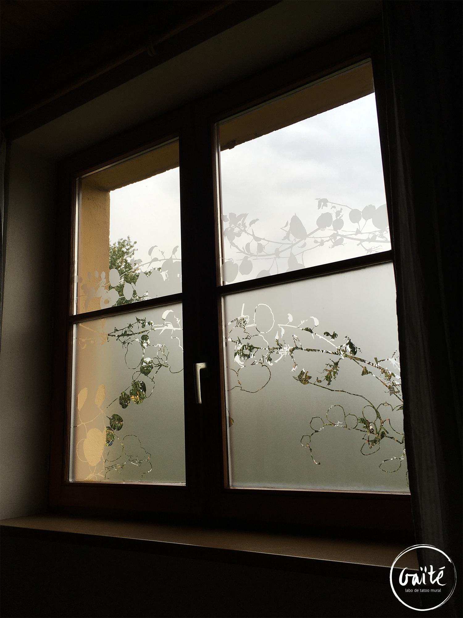 Confidentialité et habillage graphique de vitres – Plobsheim